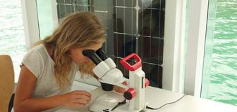 Foto: Mikroskopieren mit dem Binokular